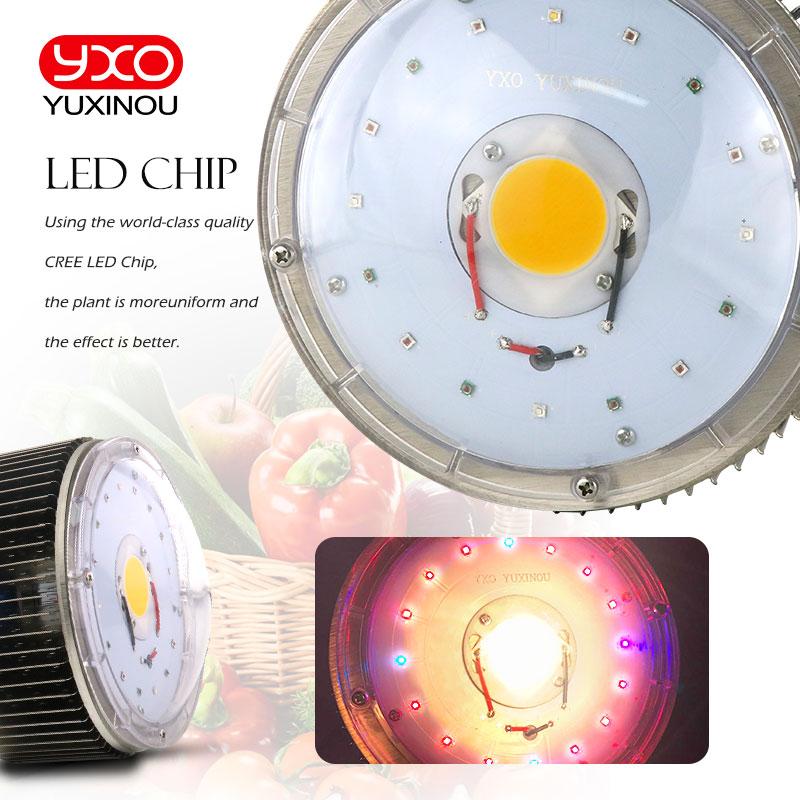 120w Cree Cxb3590 Led Grow Light Shen Zhen Future Led Light
